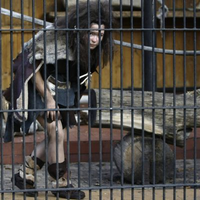 Biologists observe Anti-Vaccers making tools, solving simple problems at area Zoo